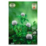 Thelema Lenormand 5