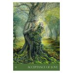 nature's whispers oracle 5